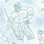 SP-hockey-Y261