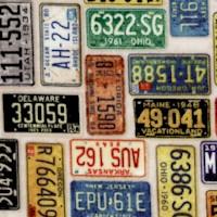 TR-licenseplates-R45