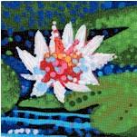 Water Garden - Beautiful Water Lilies