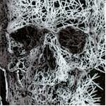 Freak Out - Freaky Skulls on Black