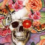 MISC-skulls-Y982