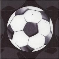 SP-soccer-Z829