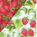 DFQ-strawberries-Q157
