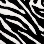 AN-zebra-Y941
