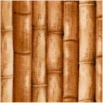 Packed Bamboo Stalks