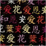 Kimono - Calligraphy on Black