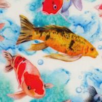 FISH-koi-Z786