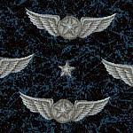PAT-airforce-W896