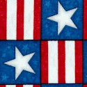 True Colors - Stars and Stripes Checkerboard by Dan Morris