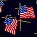 PAT-flags-P308