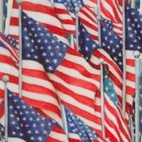 PAT-flags-Z379