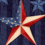 We the People - Patriotic Stars on Blue