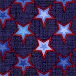 Freedom's Star - Tossed Patriotic Stars on Navy by Color Principle