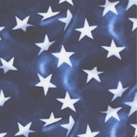 American Truckers - Waving Stars by Robert Giordano