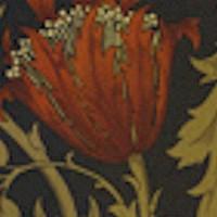 Anemone Floral - Morris & Company by Barbara Brackman