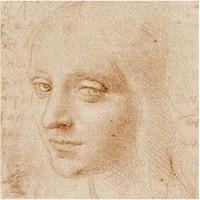 Leonardo Da Vinci - Notebook Drawings
