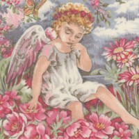 Sweet Dreams -  Angel Portraits Framed in Flowers