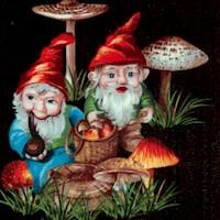 Happy Garden Gnomes on Black