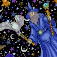 Enchanted Kingdom - Tossed Gilded Wizards and Owls by Dan Morris