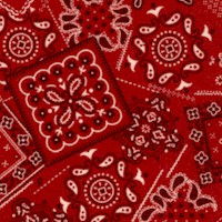 Sevenberry: Bandana in Red