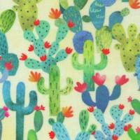 La Vida Loca - Cactus Garden