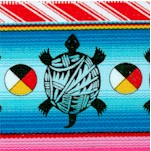 Tucson - Southwest Turtle Serape Stripe - Bright
