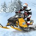 In Motion - Dynamic Snowmobilers