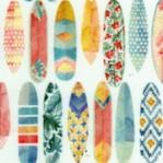 Mini-Tropics - Tasiania - Rows of Single Surfboards on Cream