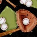 SP-baseball-U445