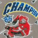 Hockey Champions on Grey FLANNEL