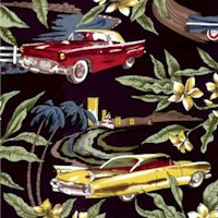 Retro Sportscars and Tropical Nights