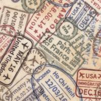 Passport - Packed Passport Stamps on Beige by Whistler Studios