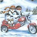 Biker Snow People