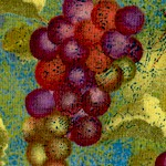 Crush - Tossed Grapes #2 by Sue Zipkin