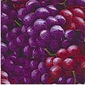 Farmer John's Market - Packed Grapes-BACK IN STOCK!