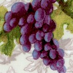 Wine Country - Tossed Grape Clusters