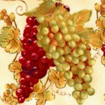 Wine A Little...Tossed Grapes on Cream by Cynthia Coutler