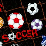 Wide World Sports - Tossed Soccer Balls on Net - SALE! (ONE YARD MINIMUM PURCHASE)
