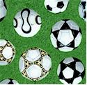 SP-soccer-P274