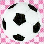 SP-soccer-Y253