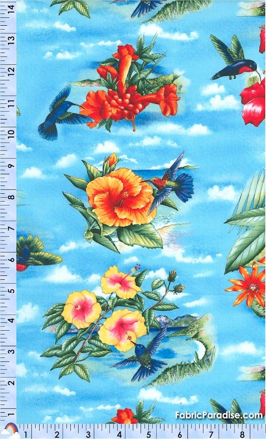 BI-hummingbirds-X342