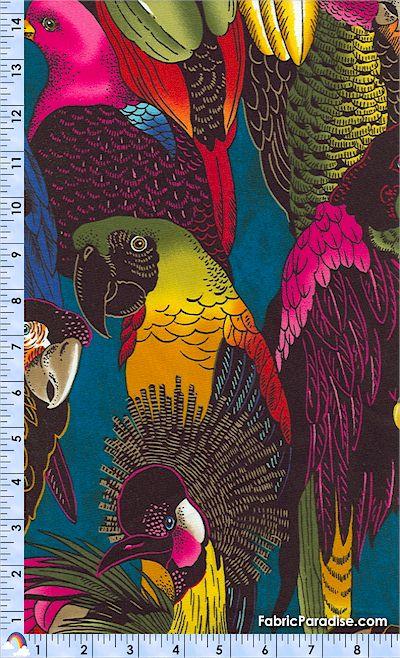 BI-junglebirds-K616