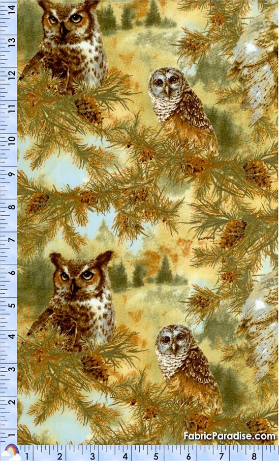 BI-owls-W508