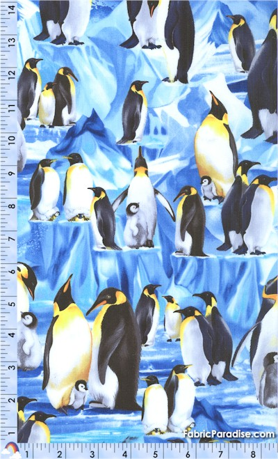 BI-penguins-U478