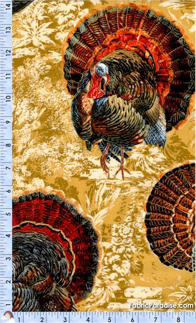 BI-turkeys-P558