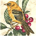 Wall Flowers - Beautiful Songbirds and Berries on Beige - SALE! (ONE YARD MINIMUM PURCHASE) (BI-bird