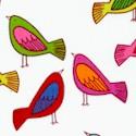 Sweet Tweet - Colorful Birds on Ivory