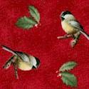 BI-birds-U673