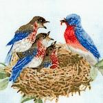 BI-birds-W75