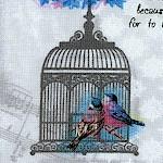 BI-birds-W817